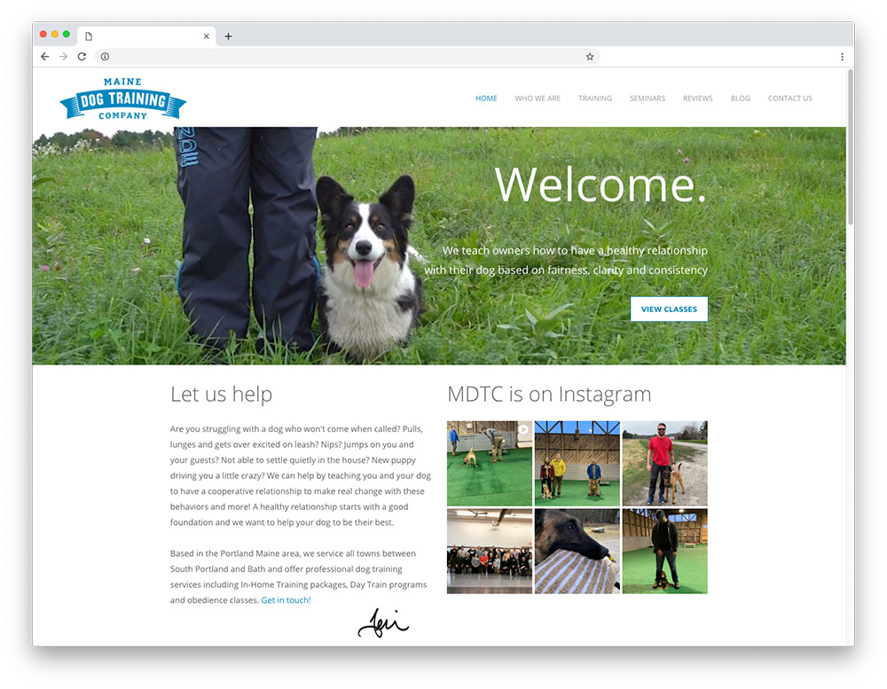 Design sample - Maine Dog Training Company homepage